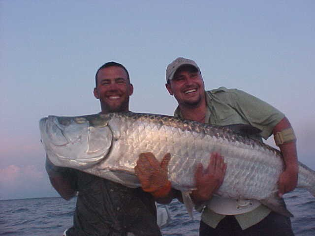 Sw florida tarpon fishing guides rates for Florida tarpon fishing