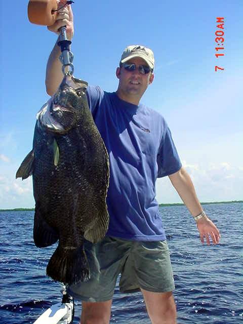 Florida fishing photo gallery for Tampa bay fishing hot spots